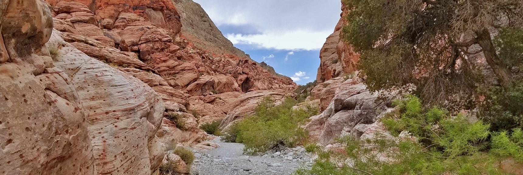 Back on Kraft Mountain Loop and Lower Gateway Canyon Trail | Kraft Mountain Loop | Calico Basin, Nevada