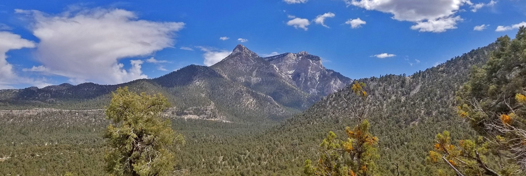Mummy Mountain's Head Viewed from an Initial Rise on the Mud Springs Loop Trail   Sawmill Trail to McFarland Peak   Spring Mountains, Nevada