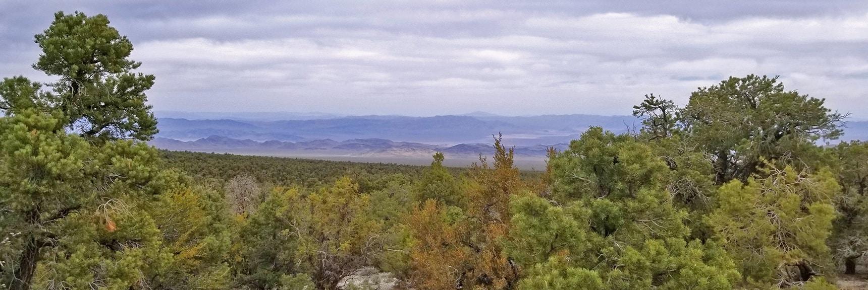 Beautiful Desert Valley Hwy 95 Corridor Below to the Northeast   Sawmill Trail to McFarland Peak   Spring Mountains, Nevada