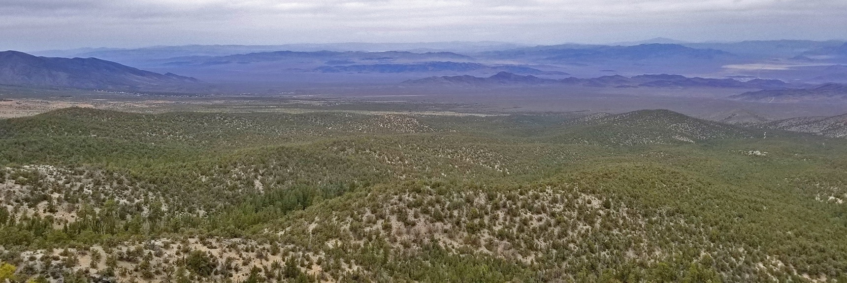 Cold Springs Town and Desert Valley Viewed from 9,235ft High Point Bluff   Sawmill Trail to McFarland Peak   Spring Mountains, Nevada