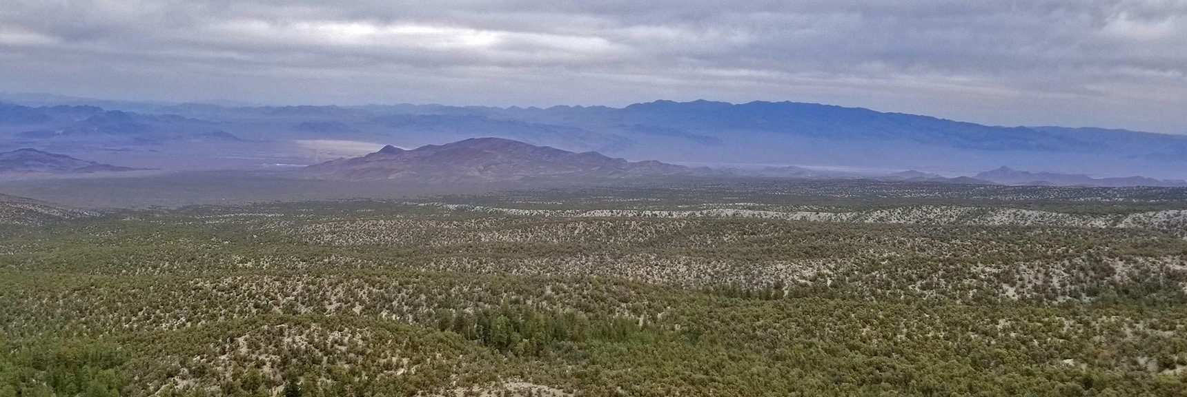 Hwy 95 Corridor Desert Valley Viewed from 9,235ft High Point Bluff   Sawmill Trail to McFarland Peak   Spring Mountains, Nevada
