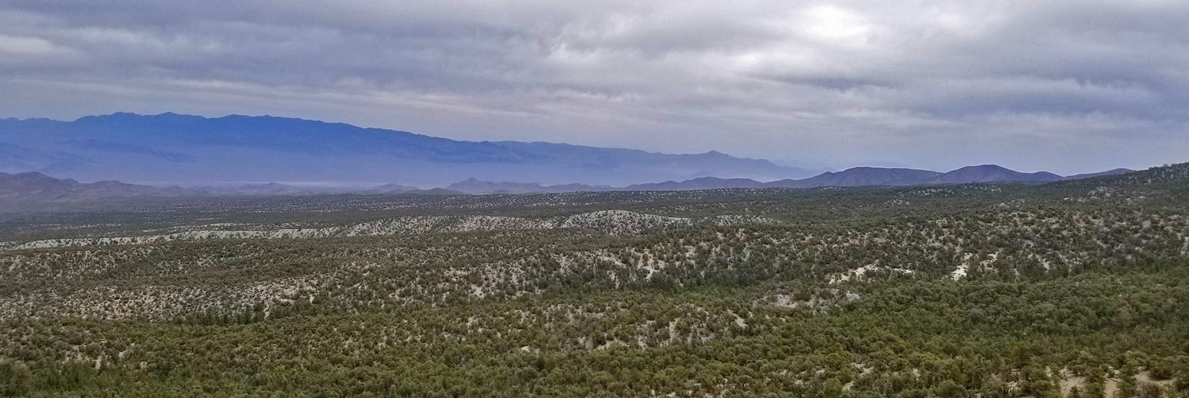 Mid Sheep Range to Gass Peak Viewed from 9,235ft High Point Bluff   Sawmill Trail to McFarland Peak   Spring Mountains, Nevada