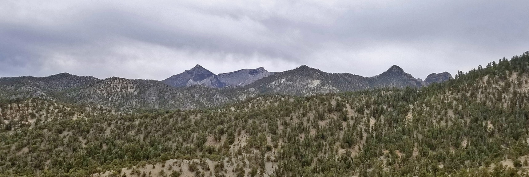Mummy Mountain's Head Viewed from 9,235ft High Point Bluff   Sawmill Trail to McFarland Peak   Spring Mountains, Nevada