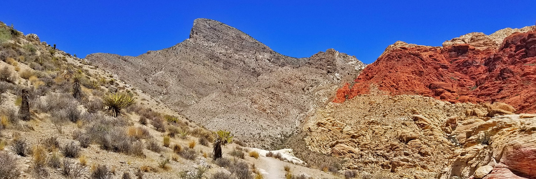 Looking Down the Kraft Mountain Loop Toward Turtlehead Peak | Kraft Mountain Loop | Calico Basin, Nevada