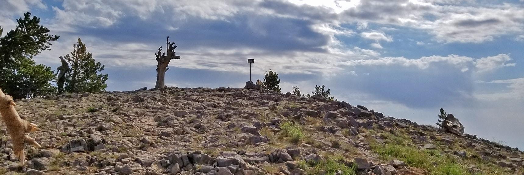 Arrival at Griffith Peak Summit - Summit Box on Pole | Sexton Ridge Descent from Griffith Peak, Mt. Charleston Wilderness, Spring Mountains, Nevada