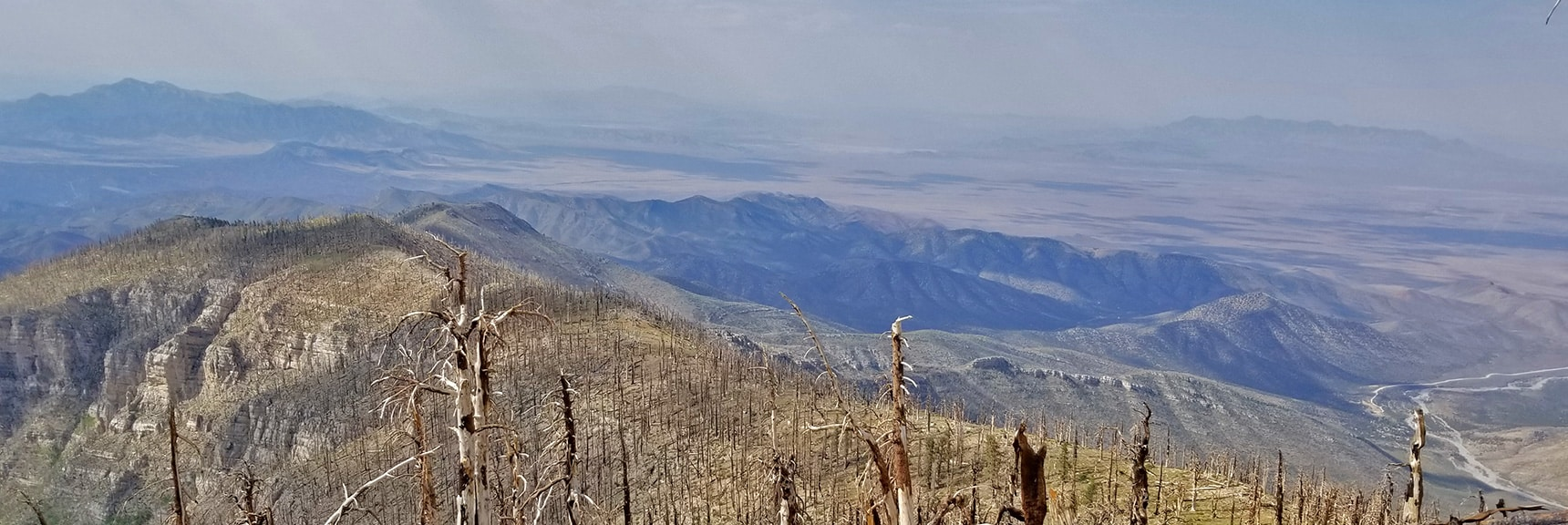 Ancient Bristlecone Pine Forest on Sexton Ridge Was Burned Out Around 2013 | Sexton Ridge Descent from Griffith Peak, Mt. Charleston Wilderness, Spring Mountains, Nevada