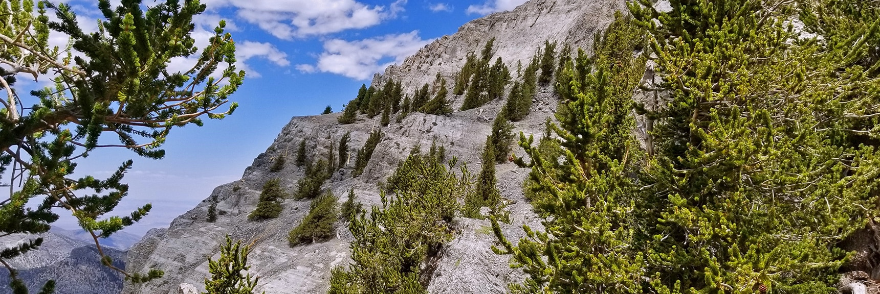 Approaching the Limit of Hiking Along the NW Cliffs. Serious Climbing Required Beyond This Point. | Mummy Mountain NW Cliffs | Mt Charleston Wilderness | Spring Mountains, Nevada