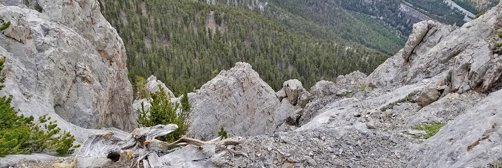 Looking Over the Ledge Down Mummy's NW Cliffs | Mummy Mountain NW Cliffs | Mt Charleston Wilderness | Spring Mountains, Nevada