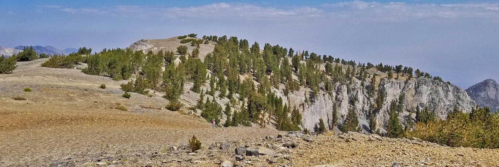 Mummy Mountain's NE Cliff Chute Follows the Base of the Cliffs Ahead | Mummy Mountain NE Cliffs Descent | Mt Charleston Wilderness | Spring Mountains, Nevada