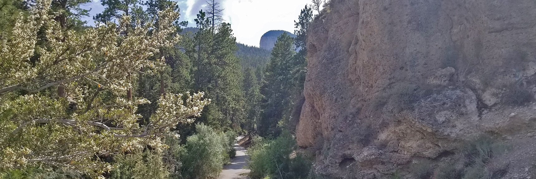 Entrance to Deer Creek Picnic Area Just Off Deer Creek Road - Mummy's Toe in Distance   Deer Creek Rd - Mummy Cliffs - Mummy Springs - Raintree - Fletcher Peak - Cougar Ridge Trail Circuit   Mt Charleston Wilderness   Spring Mountains, Nevada