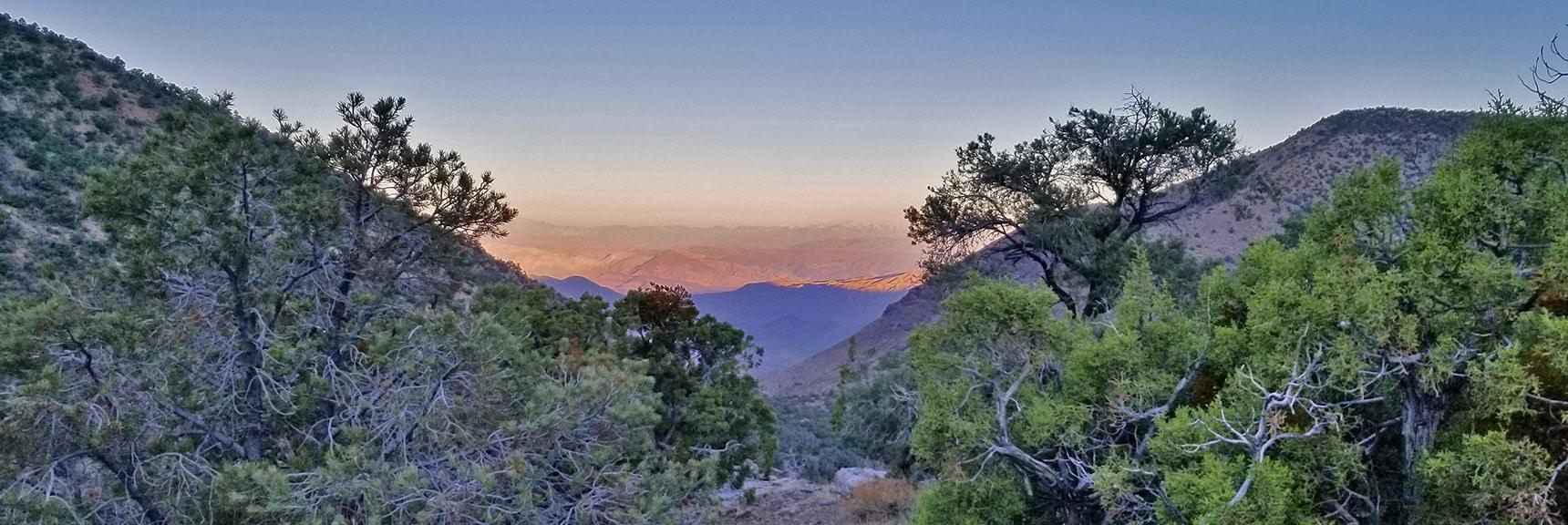 View Back Down Canyon Trail Approach to Panamint Range Summit Ridge   Wildrose Peak   Panamint Mountain Range   Death Valley National Park, California