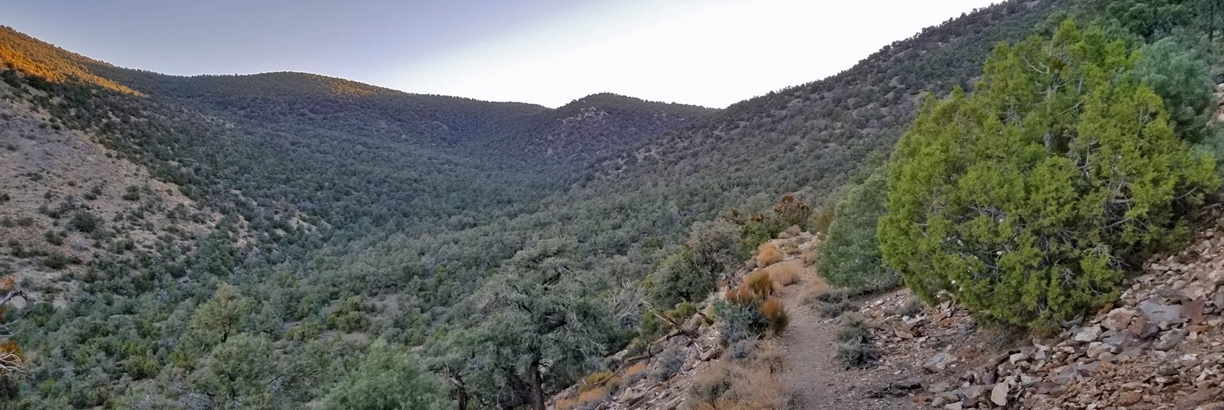 View Up Canyon Trail Approach Toward Panamint Range Summit Ridge   Wildrose Peak   Panamint Mountain Range   Death Valley National Park, California