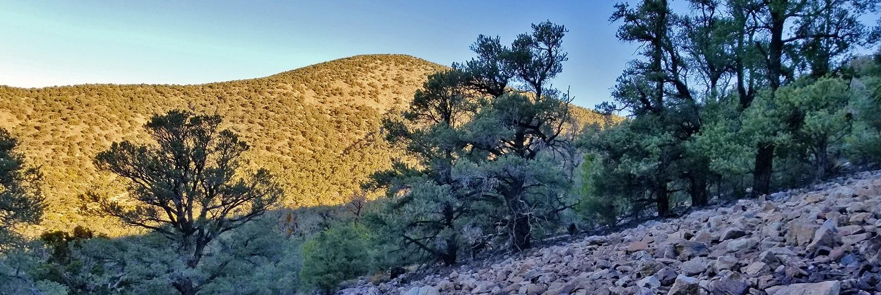 Wildrose Peak Viewed from Approach Trail Below Panamint Range Summit Ridge   Wildrose Peak   Panamint Mountain Range   Death Valley National Park, California