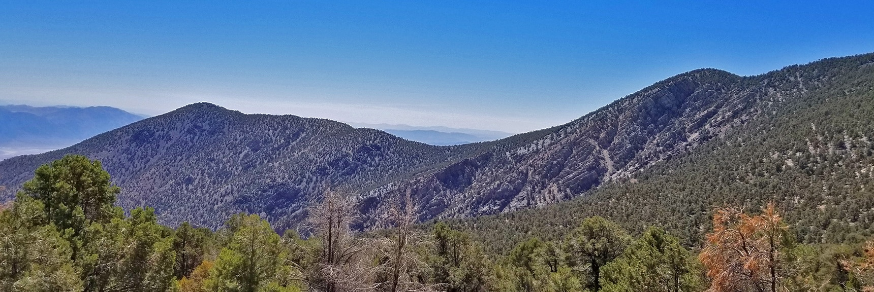 Hanaupah Canyon Upper Approach Ridge from Death Valley to Mahogany Flat Area   Wildrose Peak   Panamint Mountain Range   Death Valley National Park, California