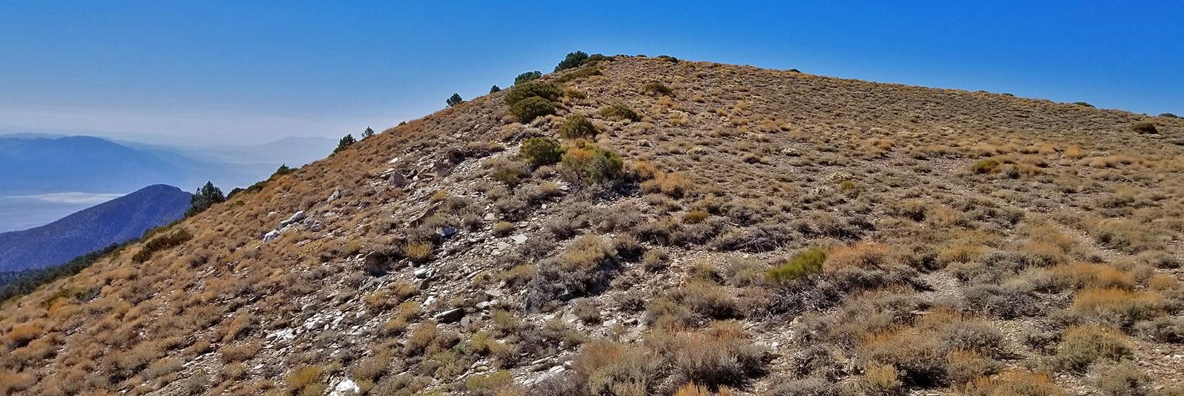 View of Mid Summit from Wildrose Peak Northern Summit Area   Wildrose Peak   Panamint Mountain Range   Death Valley National Park, California