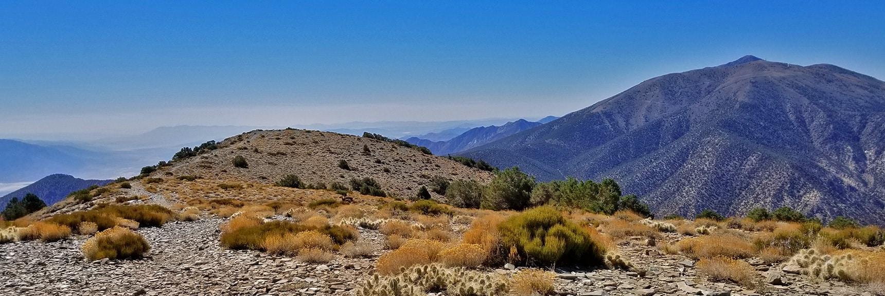 View of South Summit, Rogers, Bennett and Telescope Peaks from Wildrose Peak Mid Summit Area   Wildrose Peak   Panamint Mountain Range   Death Valley National Park, California